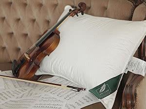 Купить подушку Anna Flaum Herbst, мягкая 50х70 см