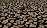 Приснилась Засуха